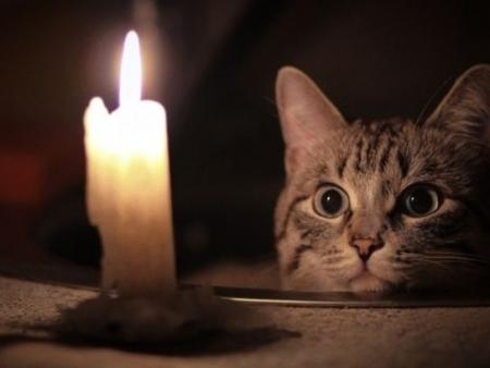 В Ивангороде без света осталось 3000 человек